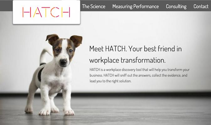 Hatch Analytics website home page
