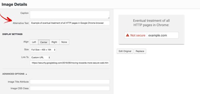 Google SEO Web Accessibility Alt Text