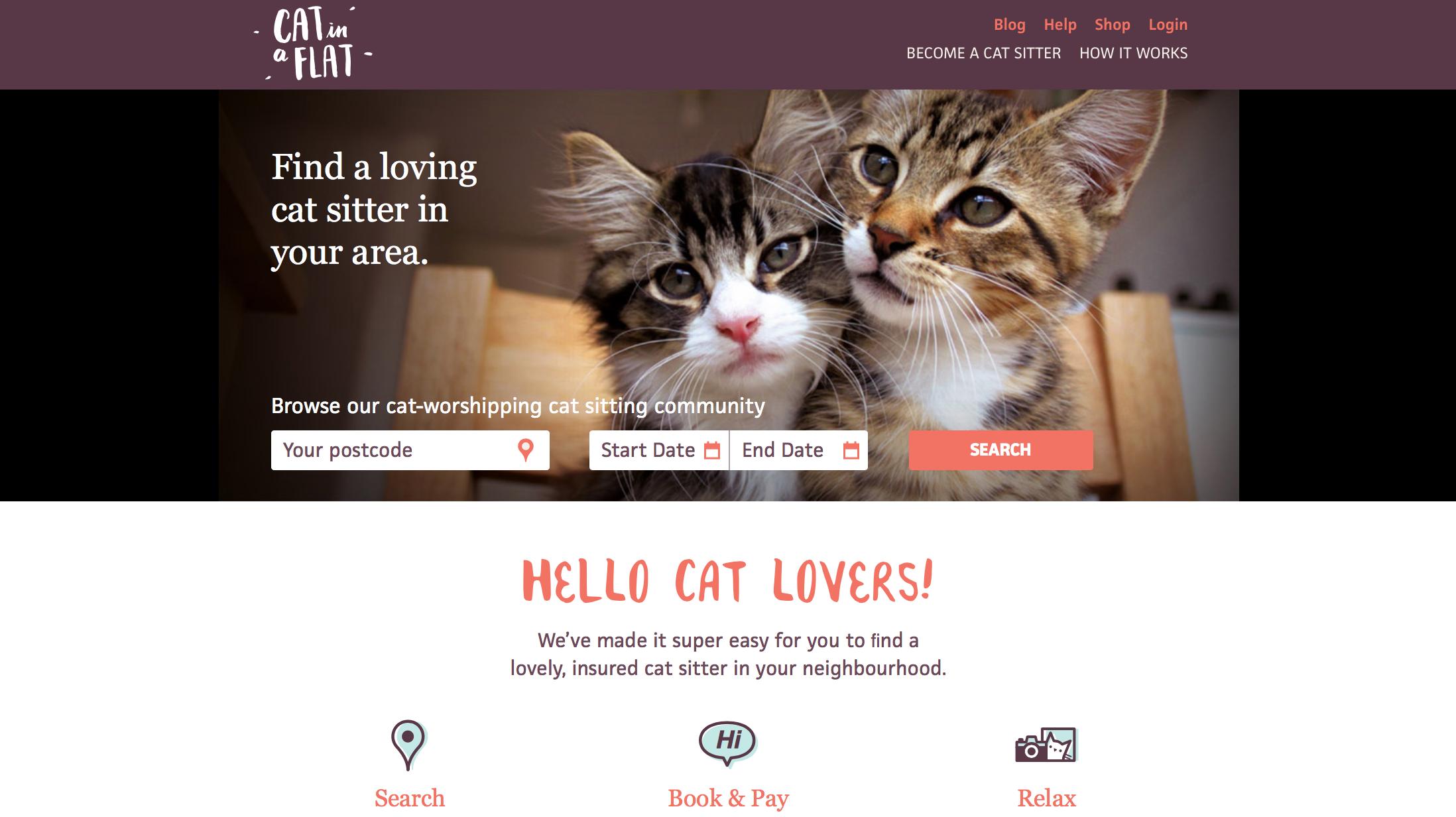 cat in a flat website