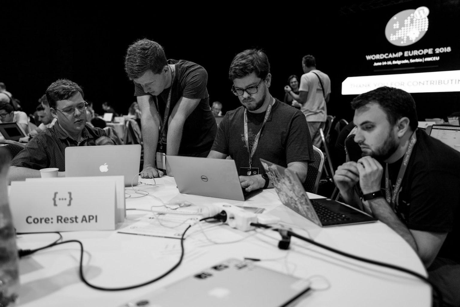 WordPress Rest API sub core team